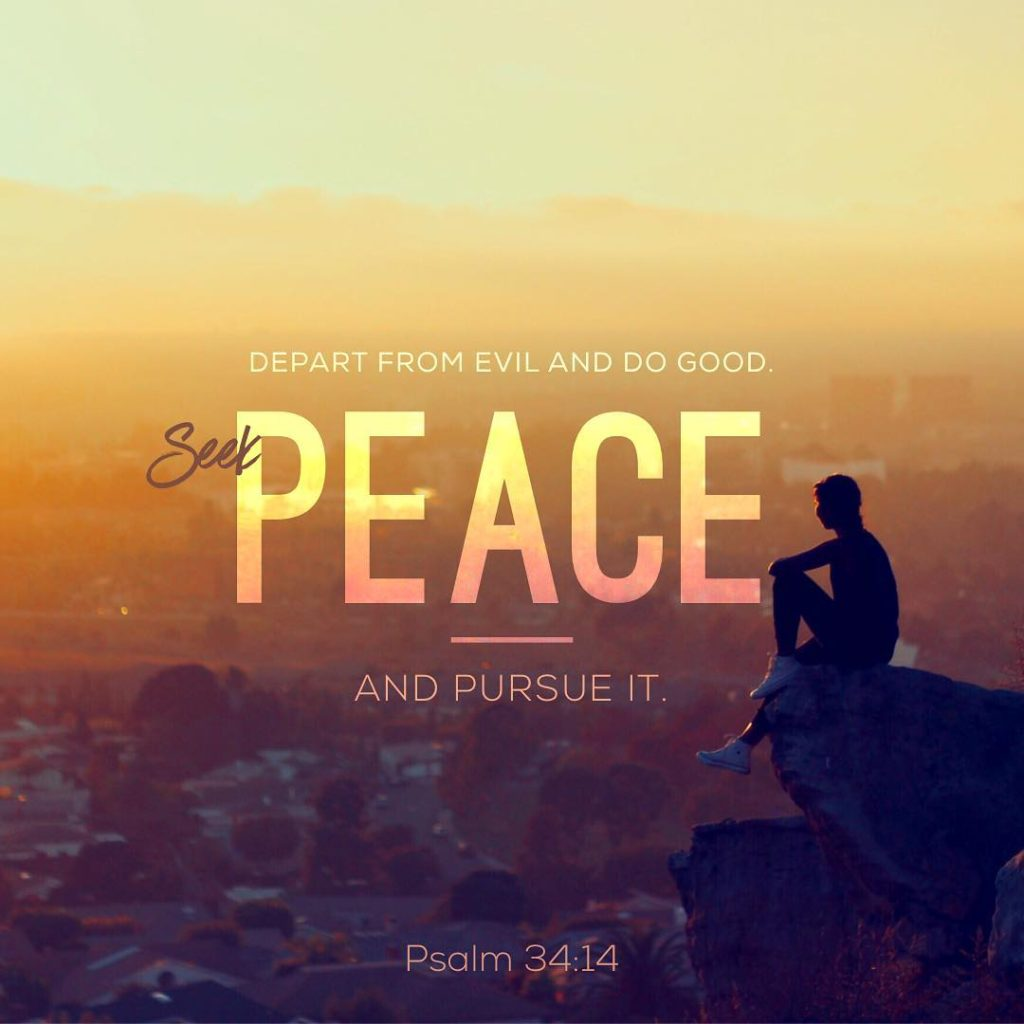 Depart from evil and do good Seek peace and pursuehellip